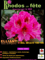 29 avril – Festival des rhododendrons
